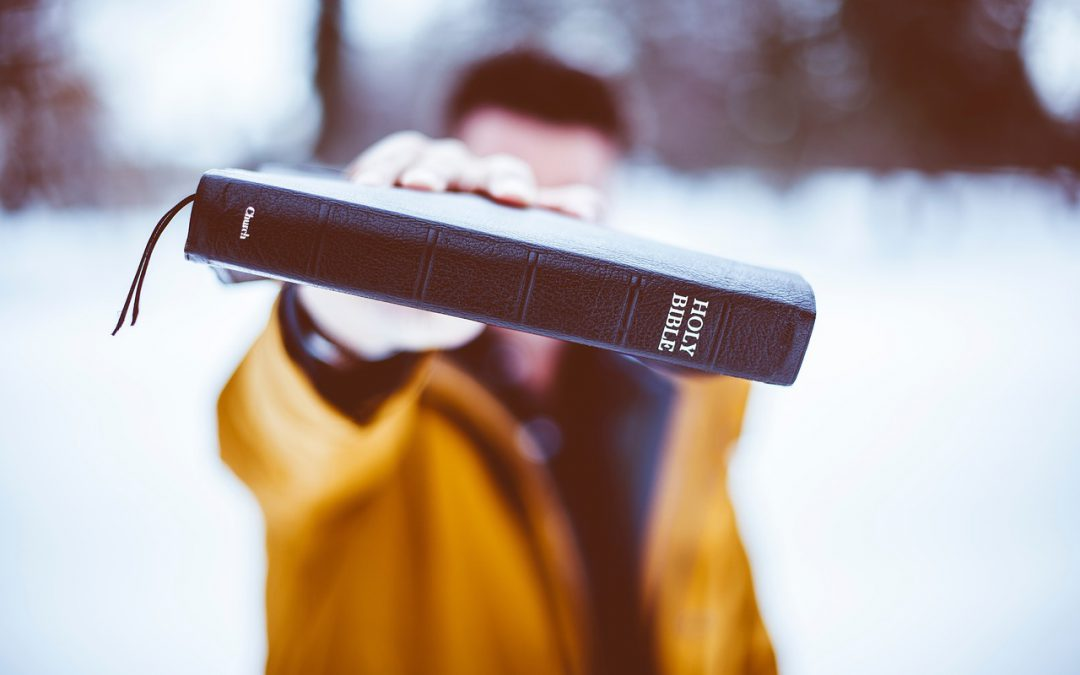 The 2019 New Testament Challenge